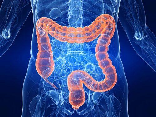 дискинезия толстого кишечника
