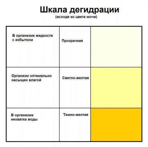 моча ярко-желтого цвета