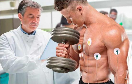 изменения в сердце спортсменов