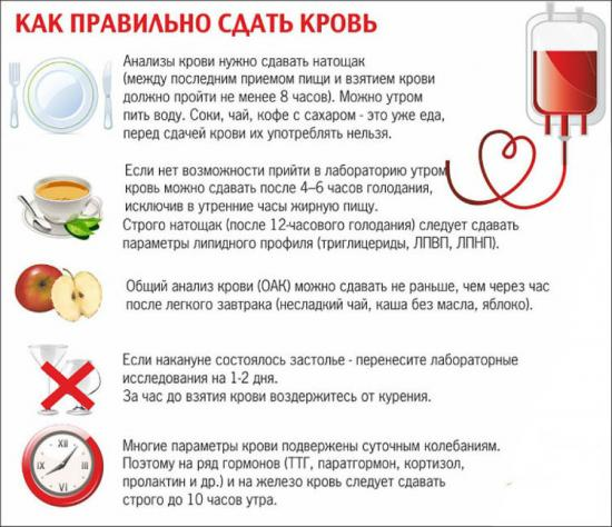 как правильно сдавать анализ крови