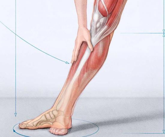 почему бывают судороги в ногах