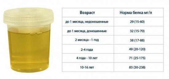норма белка в моче у детей разного возраста