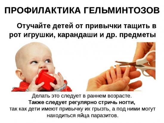 профилактика гельминтоза у детей