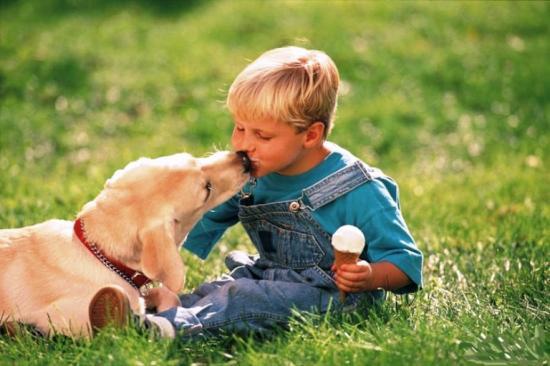 профилактика гельминтоза у людей и домашних животных