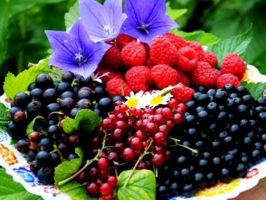 правильное питание, продукты, понижающие артериальное давление