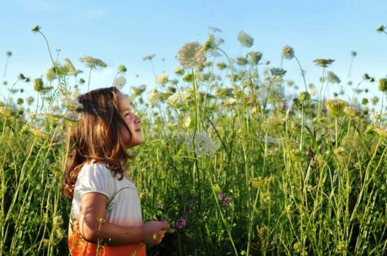 Аллергия на пыльцу растений как причина фотодерматита