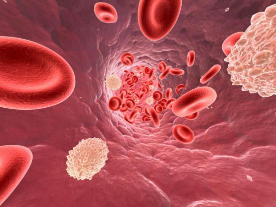 При фронтите в анализе крови повышены лейкоциты