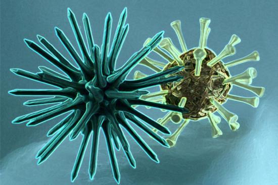 Гепатиту С характерно наличие инкубационного периода