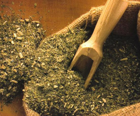 Выделяют целый ряд положительных свойств чая мате