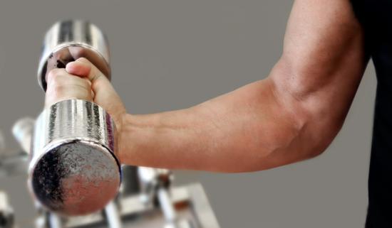Мышцы развиваются при увеличении нагрузки