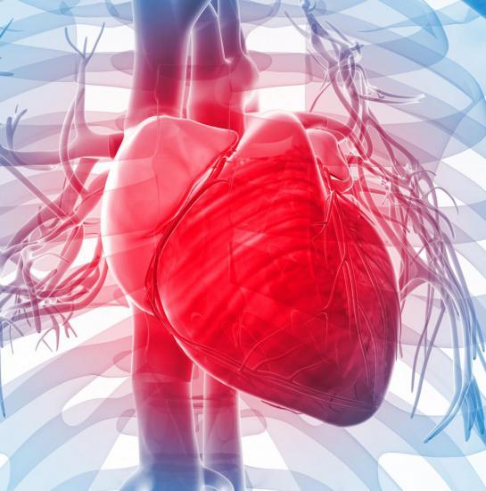 Недостаточность трехстворчатого клапана характеризуется рядом симптомов