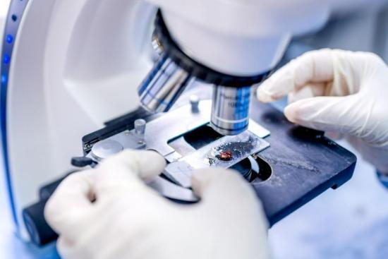 Онкология может быть диагностирована на ранних стадиях