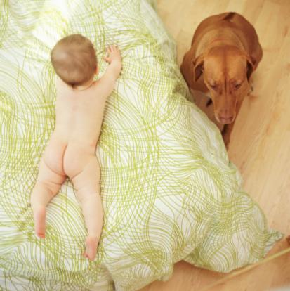 лишай может появиться как у ребенка.