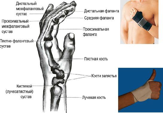 Что делать когда болит кость на руке