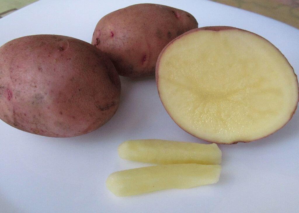 Как сделать свечу из картофеля