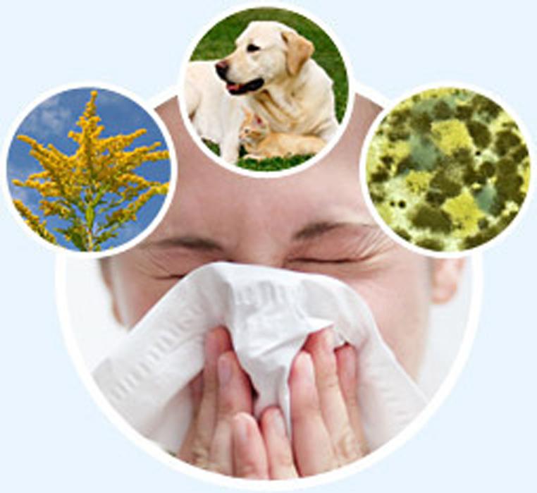 таблетки от аллергии на гель лак