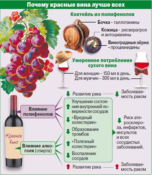 крупная, домашнее вино из винограда польза и вред принимает моего ребенка
