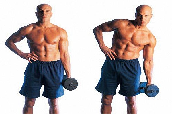 Мышцы пресса гантели