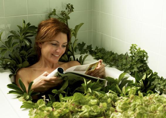 Травы при цистите у женщин лечение какие пить