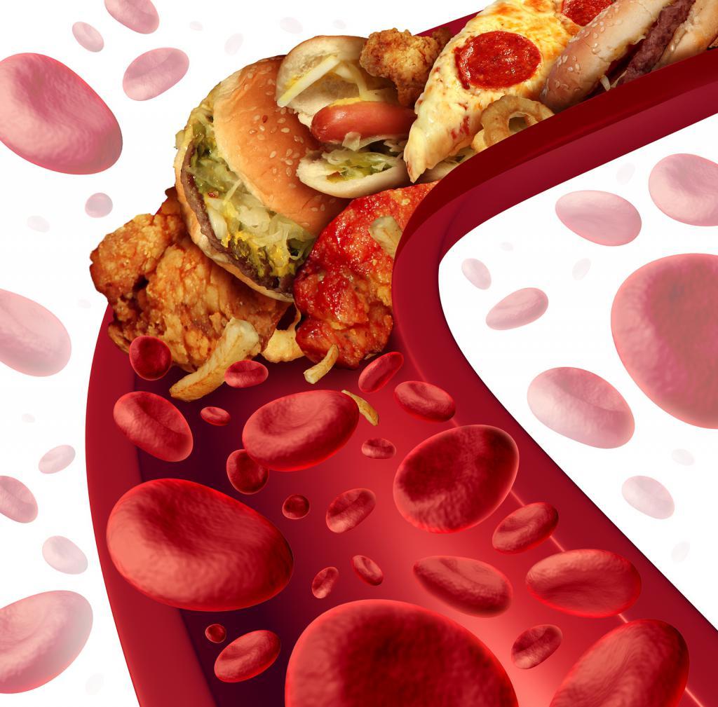 холестерин высокой и низкой плотности что это